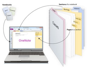 OneNote for note taking